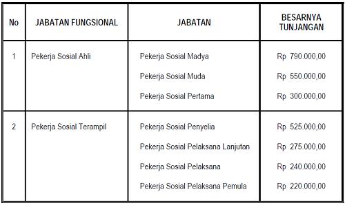 tunjangan_jabatan_fungsional_pekerja_sosial